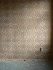 window treatment(0.0), art(0.0), textile(0.0), curtain(0.0), window covering(0.0), tile(0.0), pink(0.0), floor(1.0), pattern(1.0), wall(1.0), brown(1.0), interior design(1.0), design(1.0), circle(1.0), wallpaper(1.0), flooring(1.0),