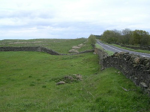 The Military Road on the line of the Wall, the ditch to its left