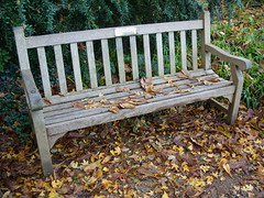 Elizabeth's bench