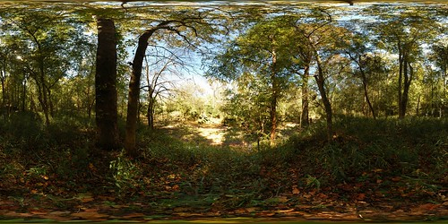 panorama heritage creek forest geotagged pano stevens 360 sphere preserve equirectangular geolon82154479 geolat33690491