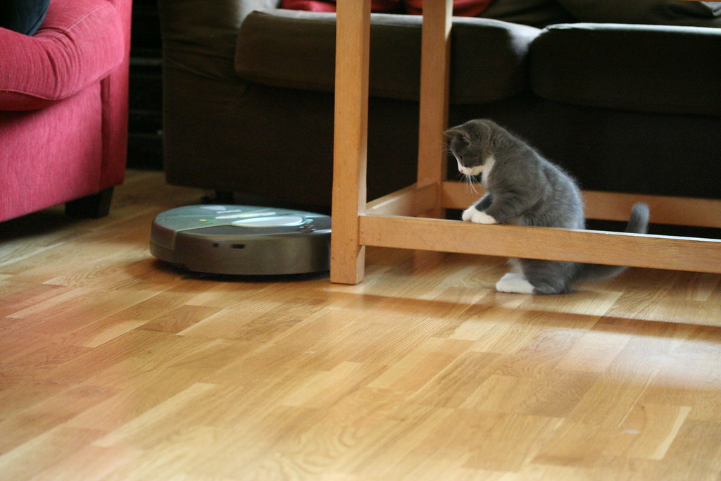 Observing the Roomba from a safe distance