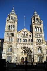 UK - London - South Kensington: Natural History Museum