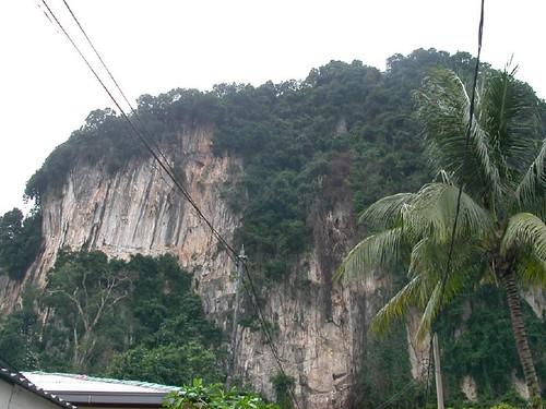 A View of Nyamuk