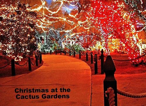 christmas trees decorations cactus beautiful night wow wonderful garden lights nice interesting fantastic colorful factory lasvegas chocolate gorgeous excellent picnik ethelm catchycolorsorange wonderfulworld