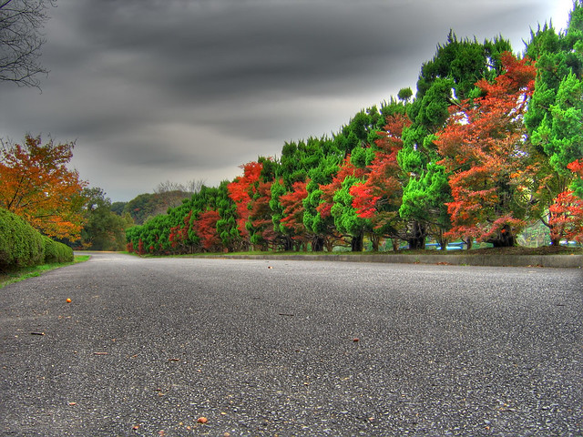 Photo:The road of autumn (HDR) By EugeniusD80