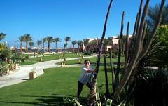 Egypt, Makadi Bay'03