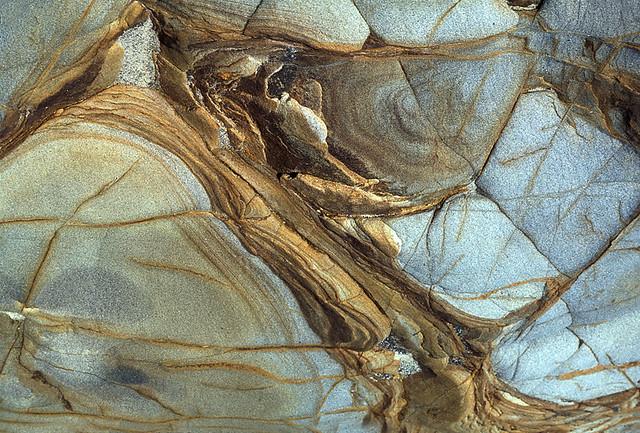 Rock Abstract- Pt. Lobos Ca. Image223