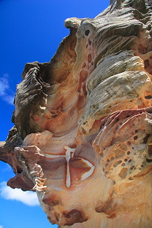 Bondi Rock formation