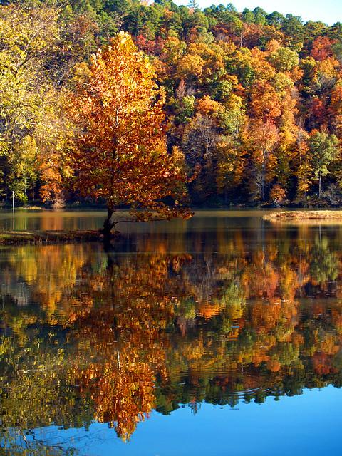 Shores Lake