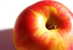 peach(0.0), plant(0.0), produce(0.0), red(1.0), macro photography(1.0), fruit(1.0), food(1.0), nectarine(1.0), close-up(1.0), apple(1.0),