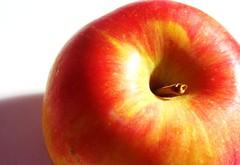 red, macro photography, fruit, food, nectarine, close-up, apple,
