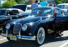 Car Show Jaguar XK150