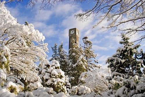 Snowy UBC