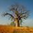 the Burkina Faso photographs group icon