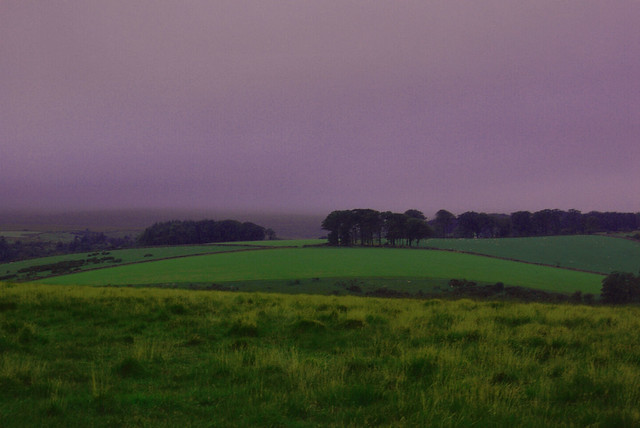 Twilight on Dartmoor