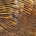 Nailed Texture