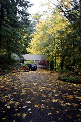 autumn view of our house    MG 4494