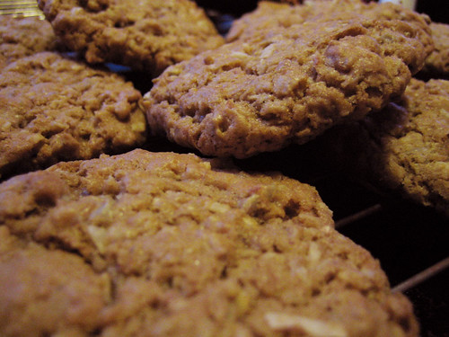 oatmeal cookies with coconut & sunflower seeds
