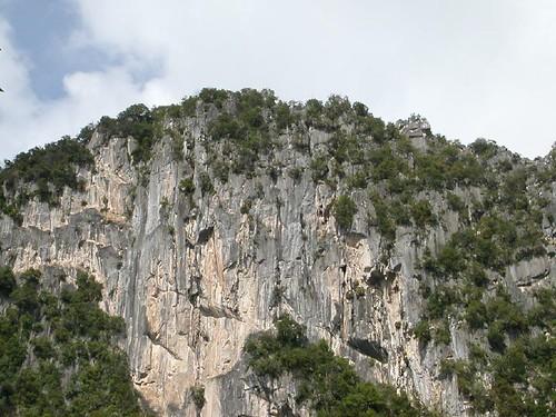 A View of Bukit Takun