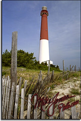 Barnegat Light NJ50