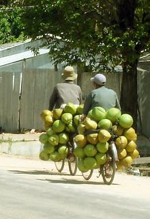Cambodia Life 03