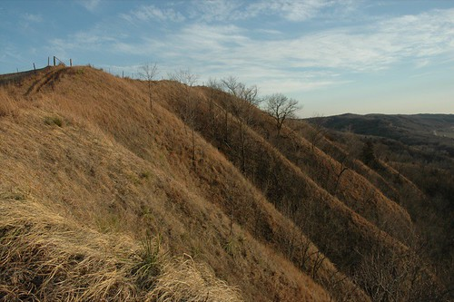 Loess Hills Ridge