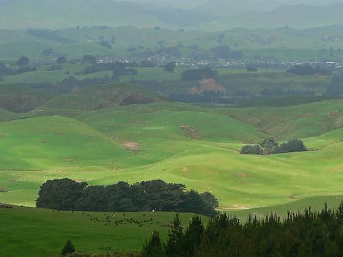 newzealand geotagged manawatu tararua curiouskiwi geo:lat=40415256 geo:lon=175726549 brendaanderson curiouskiwi:posted=2006