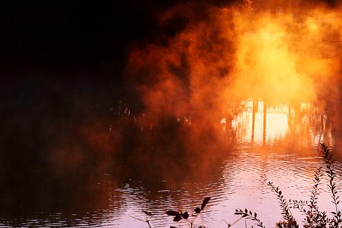 Fog at Sunrise by TheGiantVermin