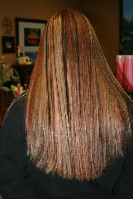 268267156 bbbc800f92 z Brown Hair With Highlights
