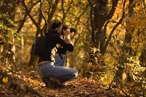 Fall Photographer