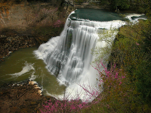 Favorite State Park Knoxville Cookeville Manchester
