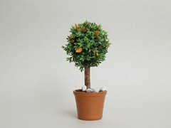 arecales(0.0), flower(0.0), branch(0.0), tree(0.0), produce(0.0), food(0.0), floristry(0.0), bonsai(0.0), flowerpot(1.0), plant(1.0), houseplant(1.0),