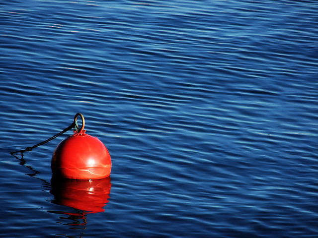 This Buoy