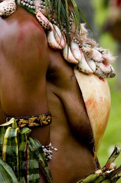Papua New Guinea bra shell