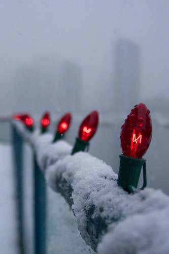 Lights in the Snow