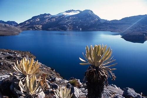 mountain southamerica nature landscape outdoors nationalpark colombia hiking scenic paisaje sierra montaña chita nevado sudamerica boyaca parquenacional cocuy arauca guican