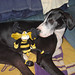 Zoe and Bumblebee