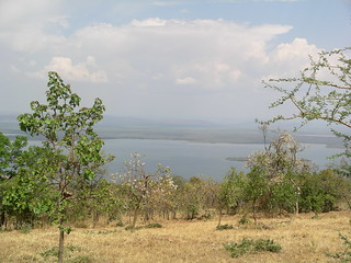Afternoon View from Akagera Lodge
