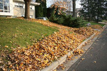 Fall Home Preparation Checklist