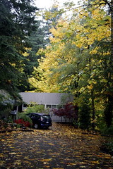 autumn view of our house    MG 4495