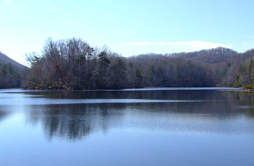 lake outdoors view tn turtle tennessee wildlife hike deer bobcat racoon overlook wolves baysmountain kingsport