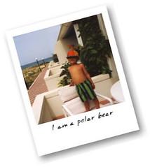 polaroidonizer.b3ta.org