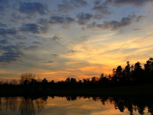 sunset bravo quality magicdonkey outstandingshots specland ourpond