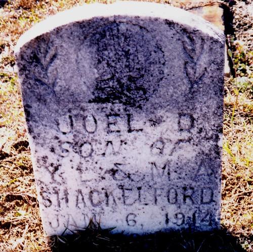 Grave of Joel Donovan Shackelford