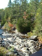 ruisseau pont suspendue foret ouareau