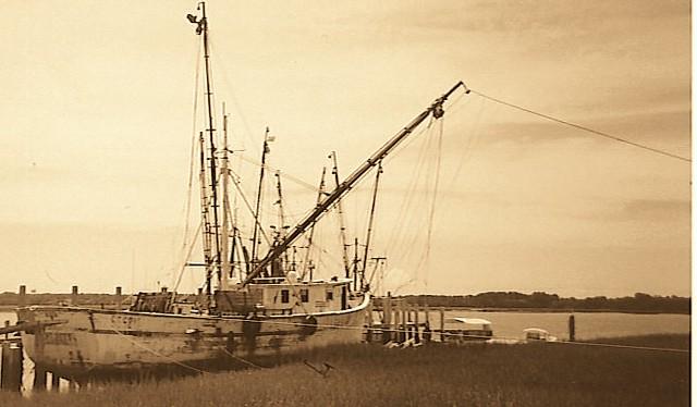 Wadmalaw Island Sc To Myrtle Beach Sc
