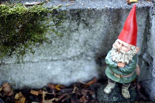 gnome chomsky    mg 2000