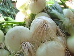 coconut(0.0), flower(0.0), shallot(0.0), plant(0.0), fennel(0.0), gourd(0.0), vegetable(1.0), onion(1.0), produce(1.0), food(1.0),
