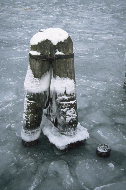 Kiel Poller Hafen Eis 290182 (33-6)