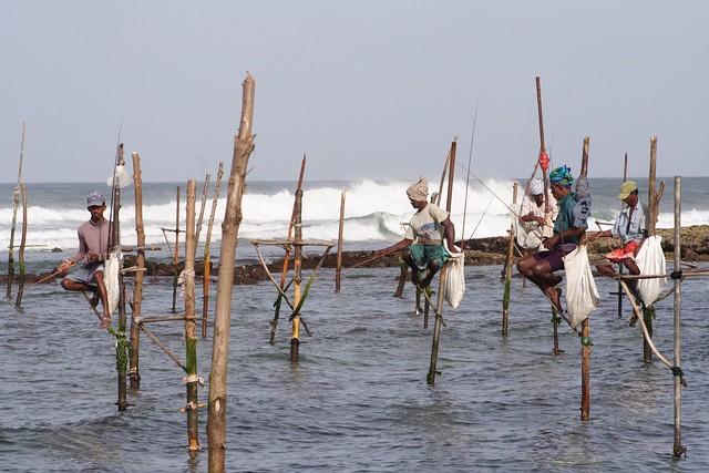 stilt fishermen sri lanka Flickr - Photo Sharing!